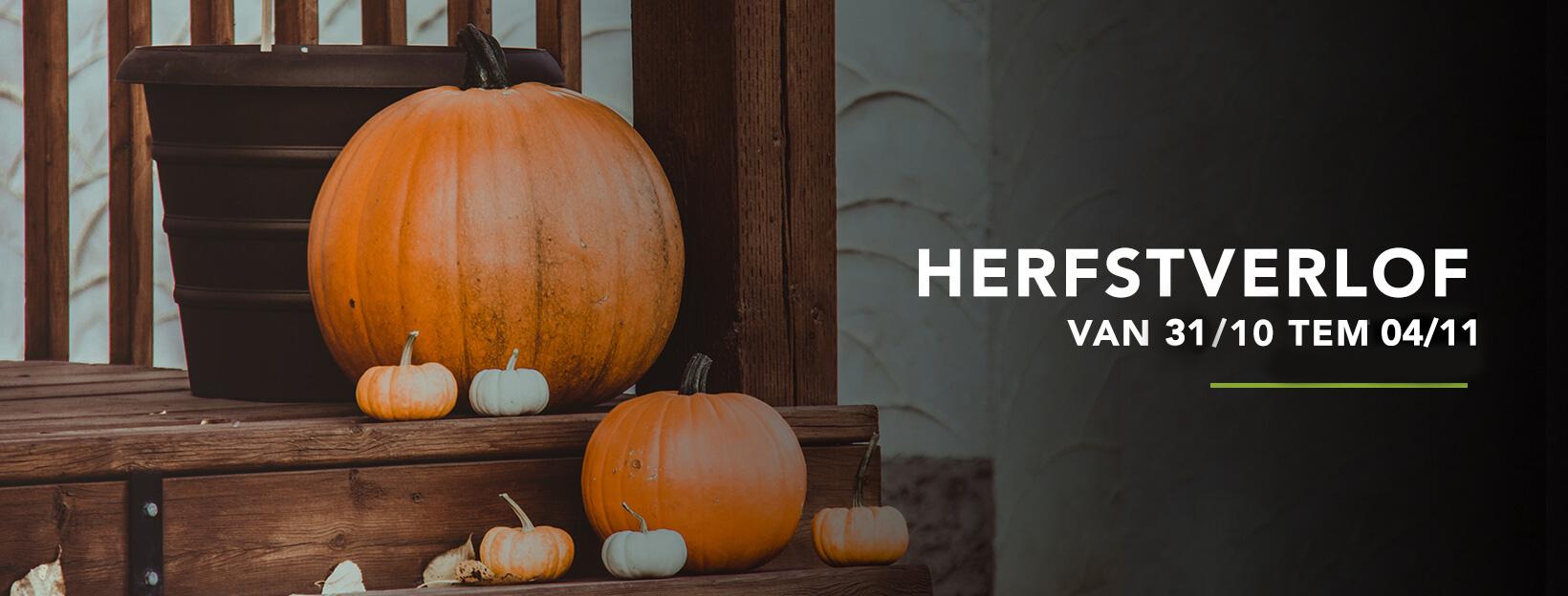 Herfstverlof - 31 oktober t.e.m. 4 november.