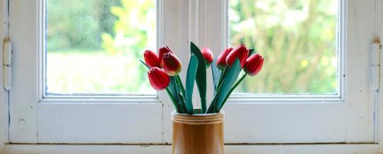 Van plaatsing tot afwerking: wij verzorgen de renovatie van uw ramen en deuren